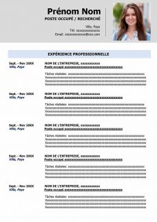 exemple de cv gratuit 2 pages