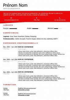 template curriculum vitae word gestion projet