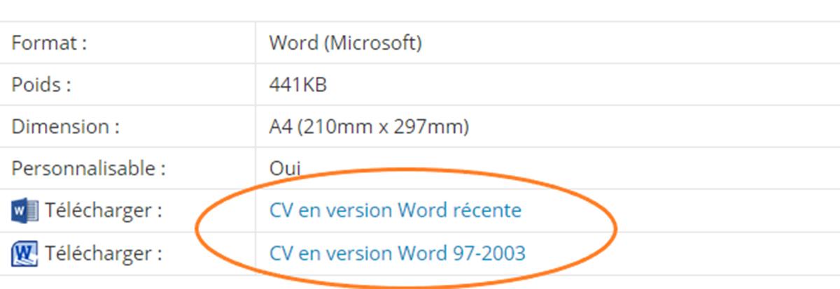 cv-sans-abonnement-word