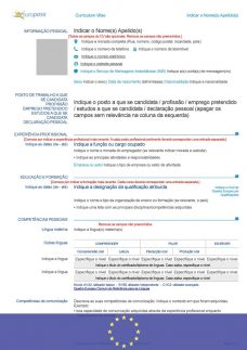 cv-en-portuguais-europass